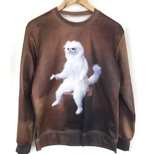Other - Confused Monkey Cat Meme Sweater
